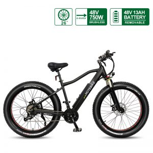 48V 750W fat tire electric bike powerful mountain bike A6AH26F Available in the US