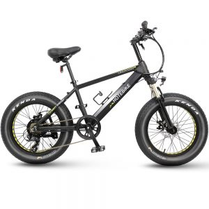 20 inch fat tire electric bicycle 36V 250W beach electric bike snow bike
