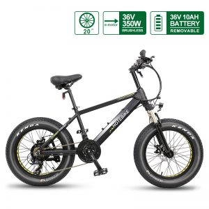 Mini fat tire electric bicycle 20″ 36V 350W beach electric bike snow bike (A6AH20F-36V350W)