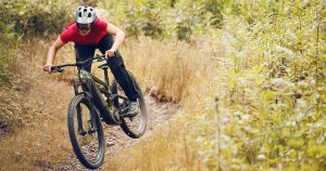 10 Best Electric Bicycles & E-Bikes 2020   The Strategist