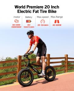 Buy electric bike — 20 inch fat electric bike