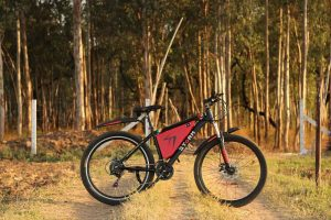 Small Format EVs & E-Bikes May Be Finally Having Their Day |