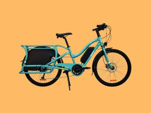 Riese and Müller, Pedego Electric Bikes, Bunch Bikes, Larry vs Harry – The Bisouv Network